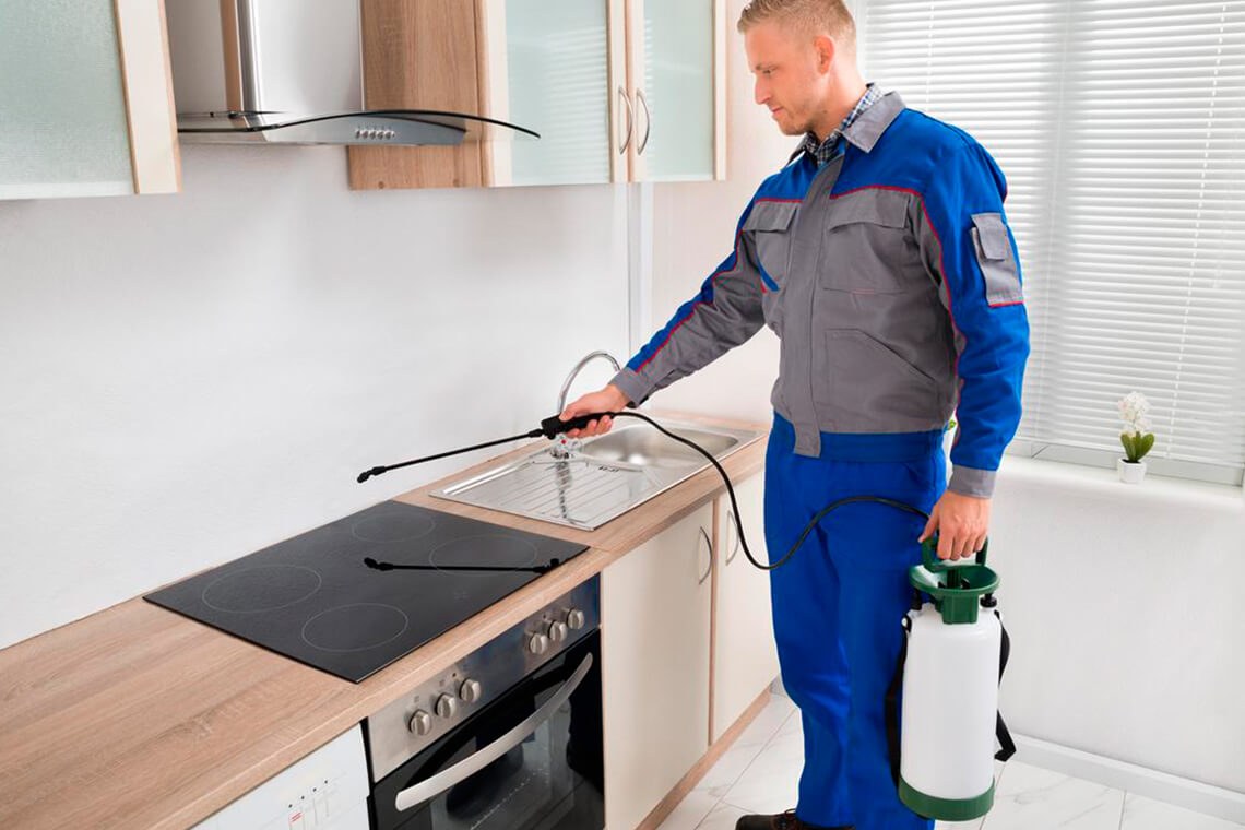 Pest Exterminator Welland