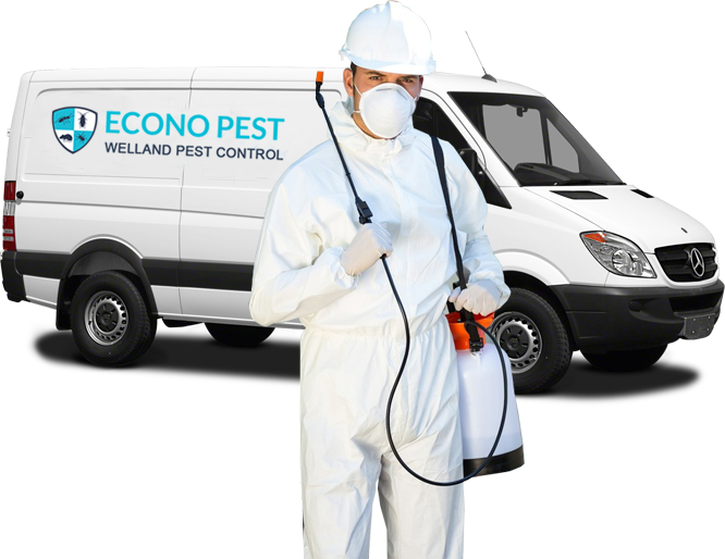 Welland Pest Control